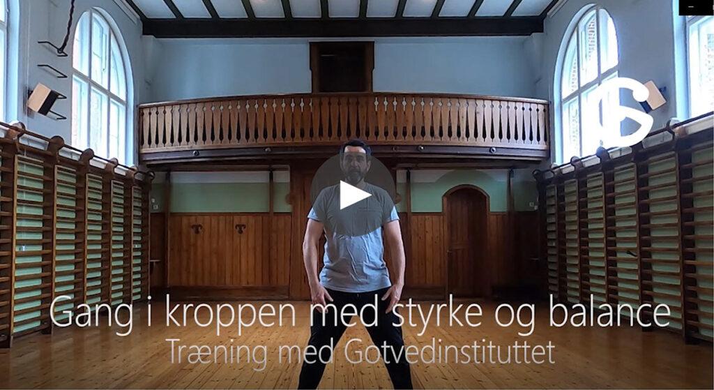 Hjemmetræning online træning styrketræning funktionel træning