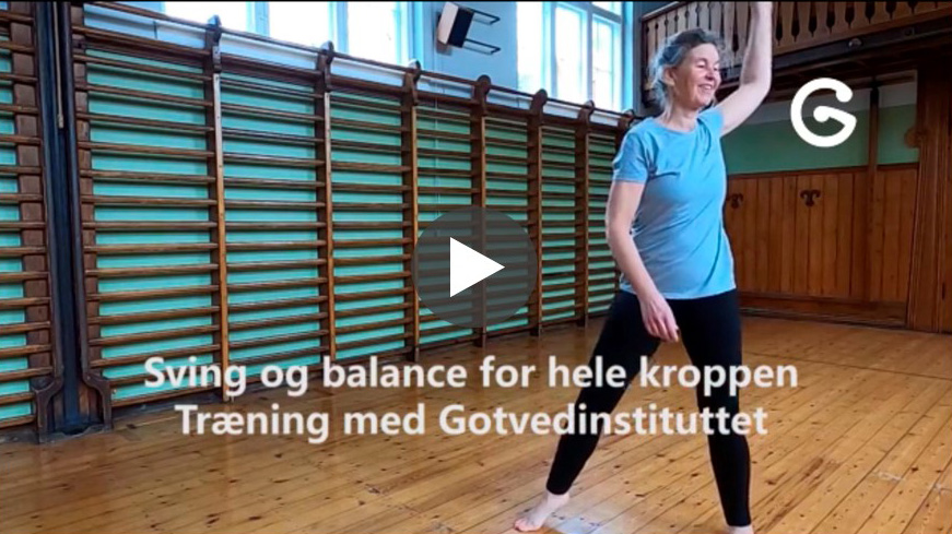 Sving og balance gymnastik Gotvedinstituttet