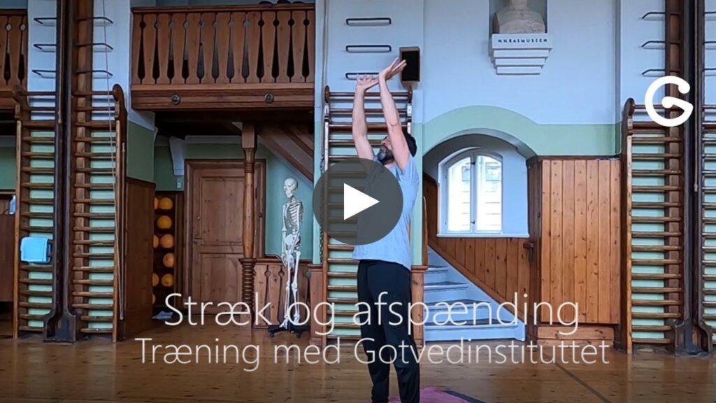 Udstrækning og afspænding efter træning med Daniel Olivares hjemmetræning med Gotvedinstituttet